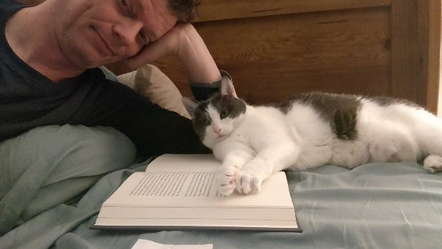 Beatrice the cat laying on a book