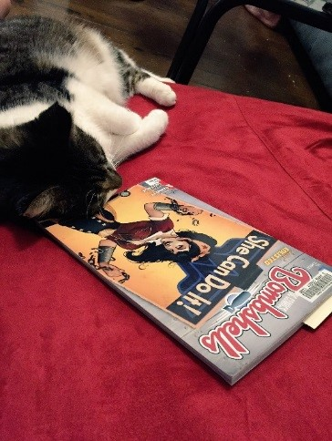 A cat curled up next to a comic book